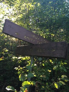 Sign where the snowmobile trail and Amity Trail meet.