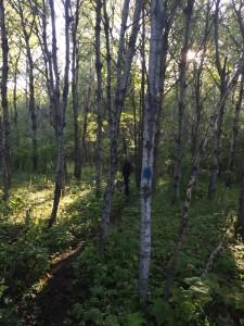 hawk ridge hike-4