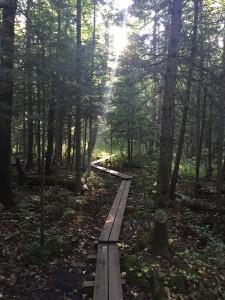 hawk ridge hike-5