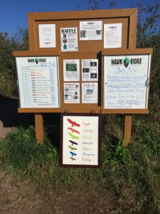 One of the info boards with all the hawk watching info.