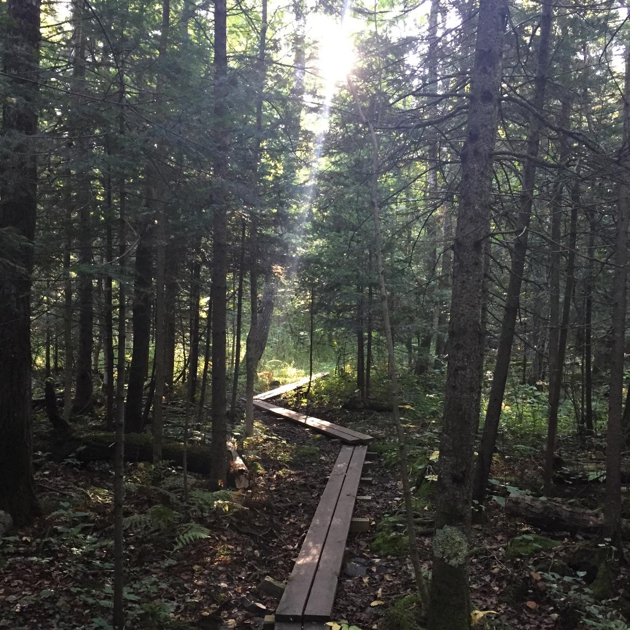 Hike at Hawk Ridge in Duluth, MN